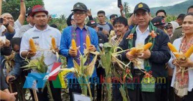 Menteri Pertanian RI, Andi Amran Sulaiman, Saat melakukan Penen Jagung di Desa Kalahunde, Kecamatan Pakeu Tengah, Kabupaten Kolaka Utara.