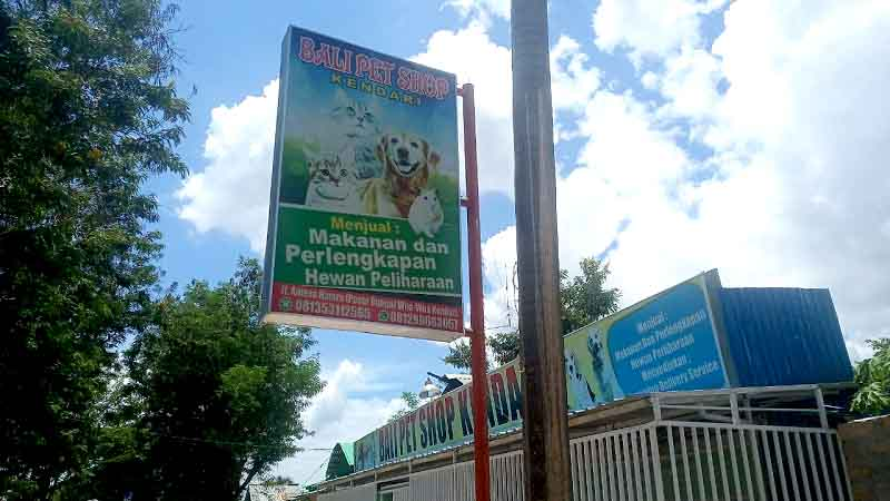 Bali Pet Shop Kendari